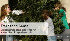 Trees for a Cause